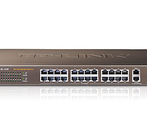 24+2G Gigabit-Uplink Switch, 24 10/100M RJ45 ports,