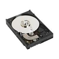 Dell 1TB 7.2K NearLine SAS HD