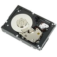 "Dell 146GB SAS 6Gbps 15k 6cm (2.5"") HD Hot Plug Fully Assembled, C6100/C6105"