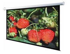 "ANCHOR ANDMV300 300cmX225cm Manual Wall/ Ceiling 150"" Diagonal Size Projector Screen"