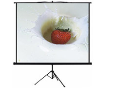 ANCHOR ANTRS180 Anchor 180cmX180cm Tripod Screen